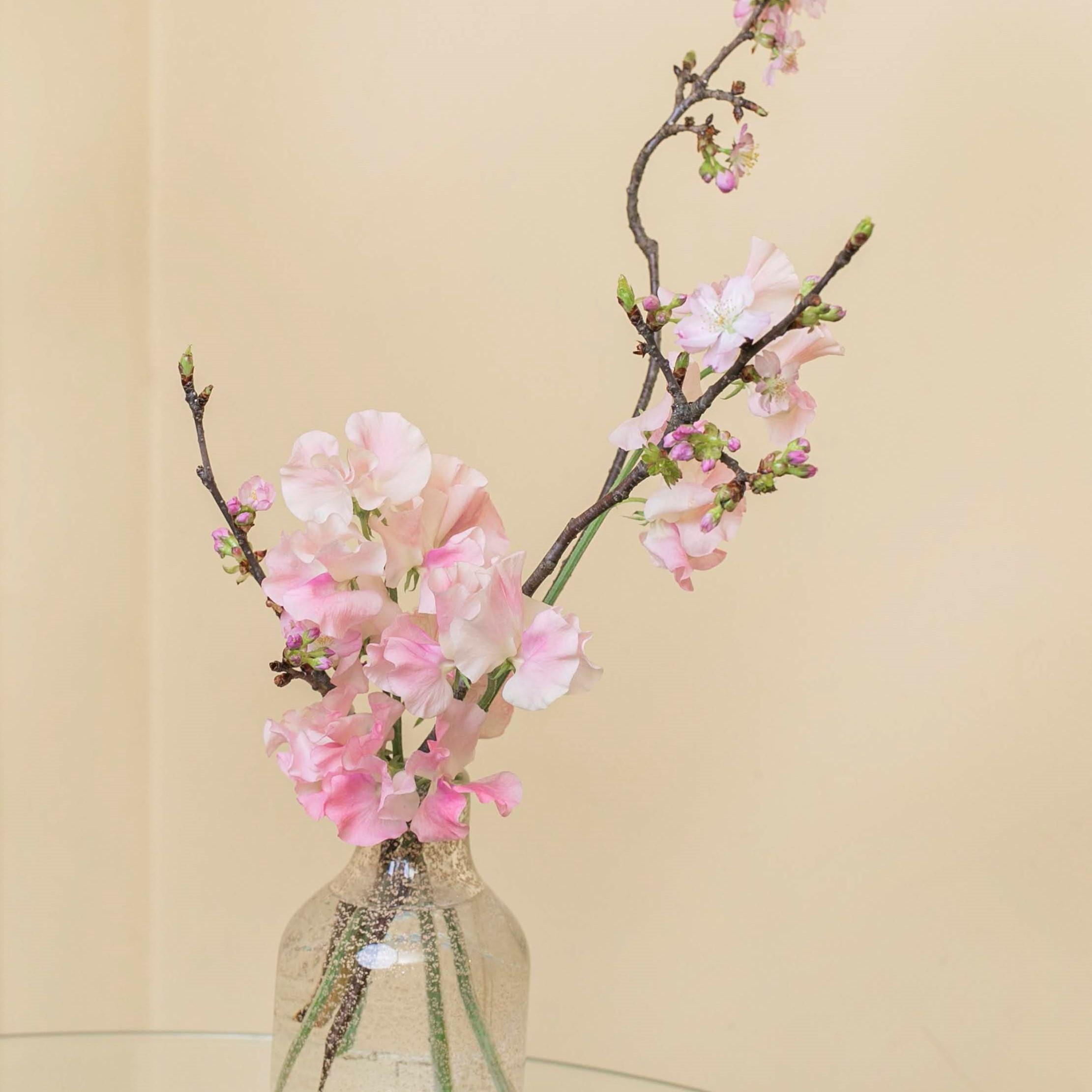 桜_1001